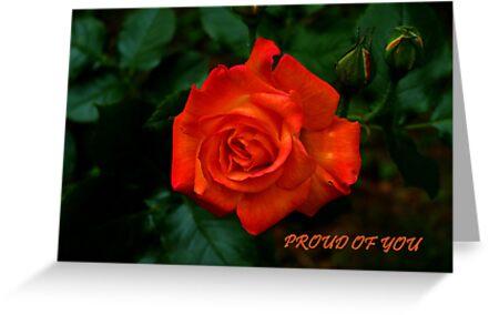 Proud Of You by Gail Bridger
