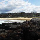 1080 Beach NSW Australia by Richard  Willett