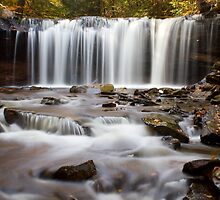 Rickett's Glen - Onedia Falls by Mark Van Scyoc