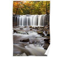 Rickett's Glen - Onedia Falls Poster