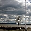 Fall on the Hudson II by Terry Arcia