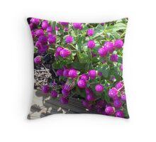 Pretty Purple Pom-Poms Throw Pillow