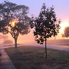 It's a foggy morning by James  Kerr