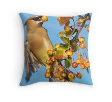 Pick-Ur-Own Throw Pillow