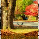 Swinging into Fall by Tracy Riddell