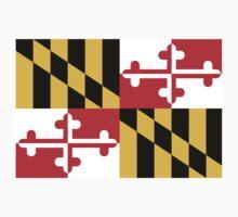 Maryland Flag 1 by Alanna Schloss