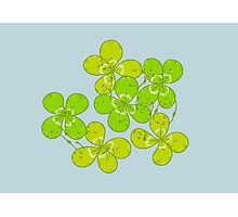 cLovers Photographic Print