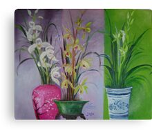 variety orchids trio Canvas Print