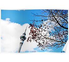 Auckland landmark Poster