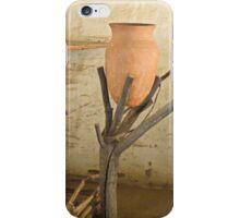 The Earthenware Jar iPhone Case/Skin
