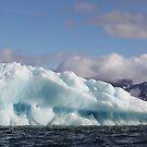 Iceberg in the sun by John Dalkin