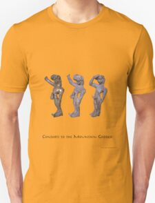 Trio of Consorts to the Mountain Goddess T-Shirt