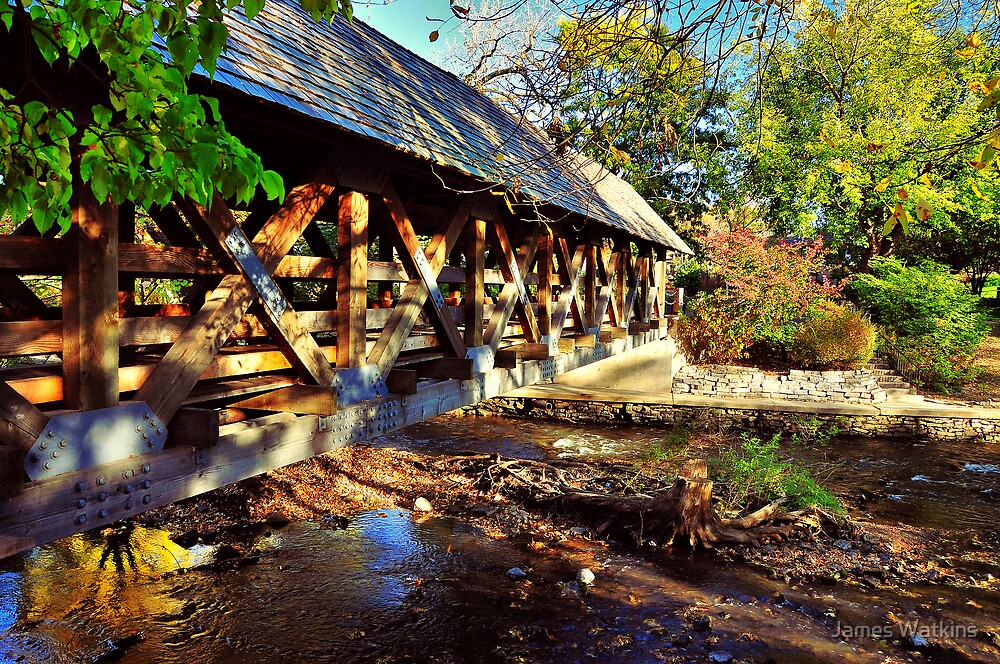 Naperville Covered Bridge by James Watkins