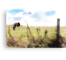 Country Ambiance Canvas Print