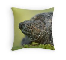Baby Snapping Turtle close-up. Throw Pillow