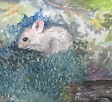 Vole, the shy one! by Marie Theron
