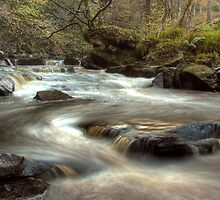 West Beck, Goathland by MartinWilliams