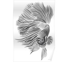Black and White Betta Fish Poster