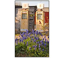 Two Pumps, Talaton Photographic Print