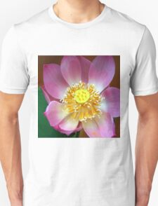 Large Water Lily (Lotus) Flower, Thailand  T-Shirt