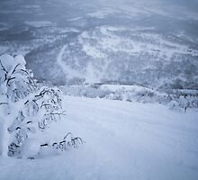 Niseko, Hokkaido, Japan by Bart The Photographer
