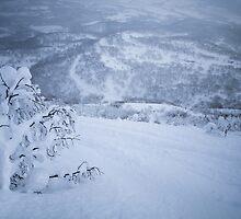 Niseko, Hokkaido, Japan by Bart The Photographer