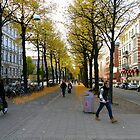 Another Streetview, Gothenburg by Anders Lidholm