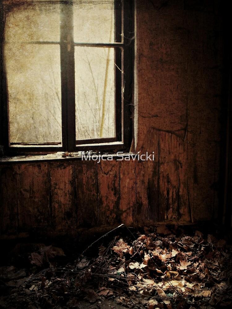 Decay by Mojca Savicki