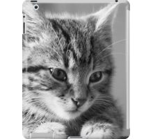 Black and White Kitten (non-clothing products) iPad Case/Skin