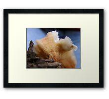 Phlebia Skin Framed Print