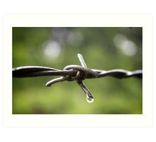 The Wire- Barbed Wire in the Rain Art Print