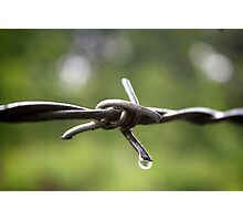 The Wire- Barbed Wire in the Rain Photographic Print