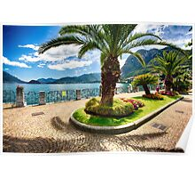 Lakeshore Walkway with Palm Trees and Flowers Poster