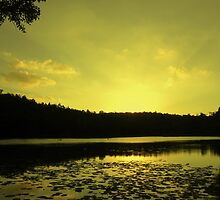 Lake SIngrauli by ravishankar82