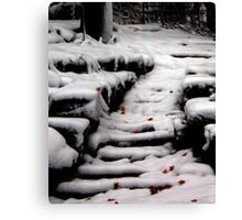 Early Snowfall in Dunrobin, Ontario Canvas Print