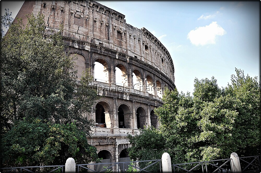 ROME - Colosseum at daylight # 1 - 10th October 2010 - by Daniela Cifarelli