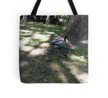 Cute Ducks and Ducklings Tote Bag
