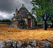 Trulli House in Italy by Debbie Pinard