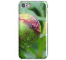 Morning Dew Peony Flower Bud iPhone Case/Skin