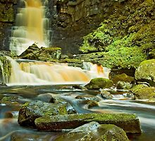 Mill Gill Force, Askrigg by davidrhscott