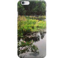 Washington State Wetlands iPhone Case/Skin