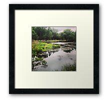 Washington State Wetlands Framed Print