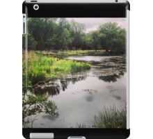 Washington State Wetlands iPad Case/Skin
