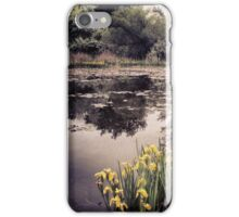 Wetland Reflections  iPhone Case/Skin
