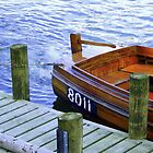 Raring To Go - Lake Windermere by dawnandchris