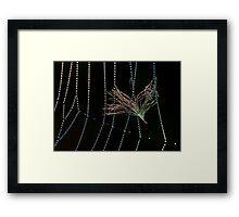 Nature Jewelry Framed Print