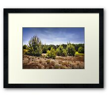 Shining Framed Print