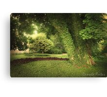 Creeping 2 Canvas Print