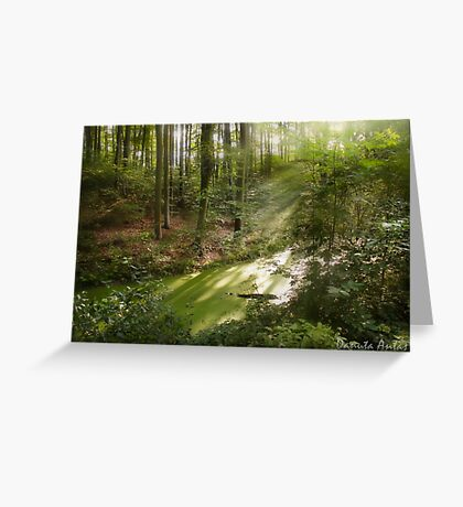 The Land Of Fairy Tales Greeting Card