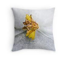 Wax Flower Macro Throw Pillow